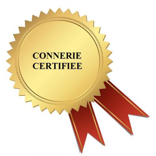 séduction,piège à cons, connerie certifiée